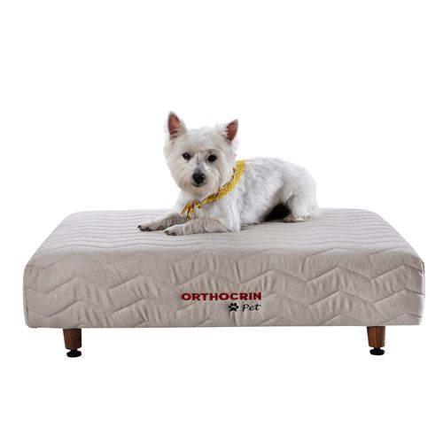 cama-box-pet-base-para-cachorro-gato-orthocrin-principal