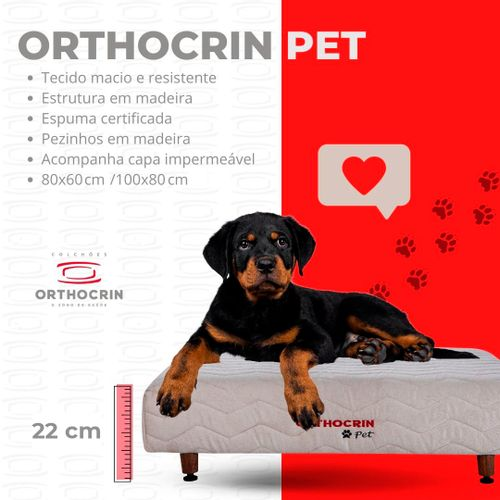 base-pet-orthocrin-cachorros-medidas