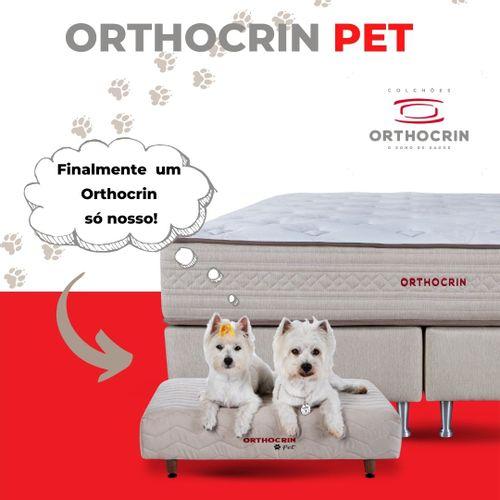 finalmente-um-orthocrin-so-nosso-cachorros-linha-pet